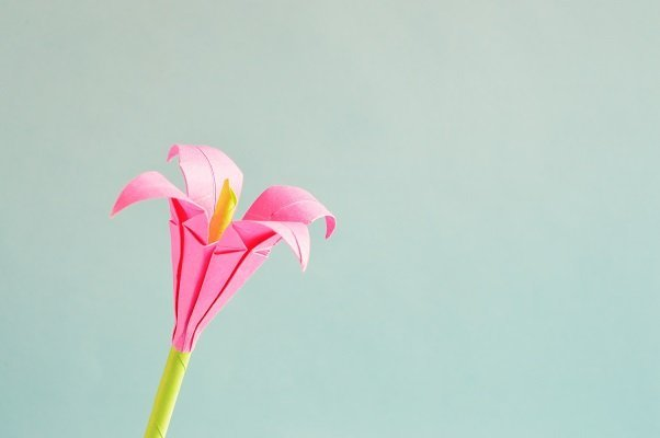 Pink Origami Flower